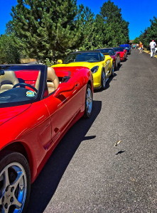 Vettes lined up at Toutle RV Park